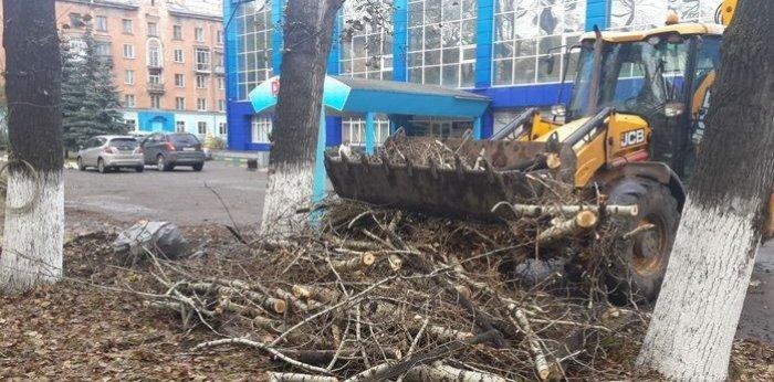 Уборка отходов спиленных деревьев экскаватором погрузчиком в Тамбовской области